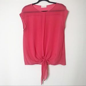 Zara Collection Sheer Tie Blouse